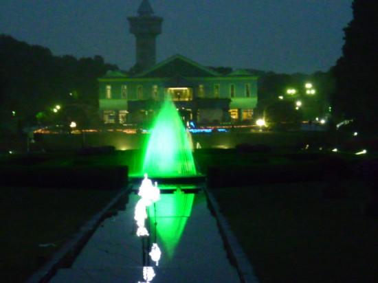 ひまわり&公園 033