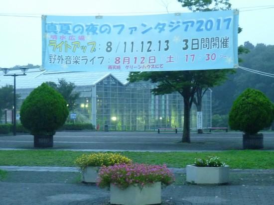 ひまわり&公園 015