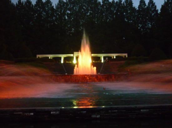 ひまわり&公園 032