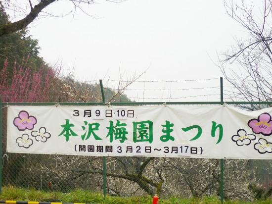 梅園 001